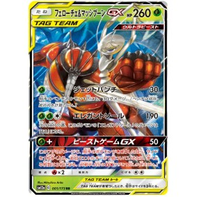 Pheromosa & Buzzwole GX 001/173 Tag Team GX All Stars Ultra Rare Unlimited Japonais  High Class Pack: TAG TEAM GX: Tag All Stars